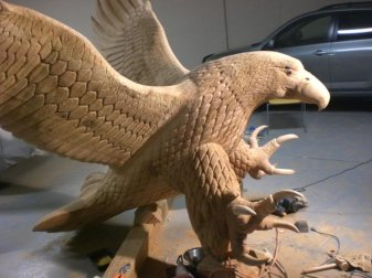 Eagle in progress